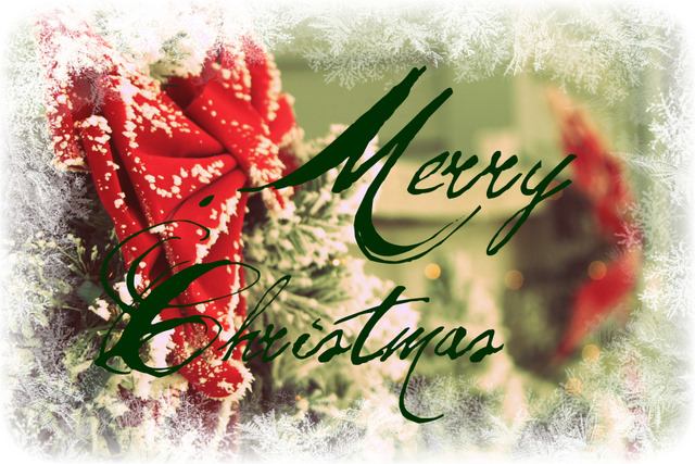 merry-christmas-cards-6_20151224081436d2e.jpg