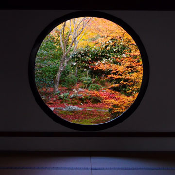 そうだ京都に移行