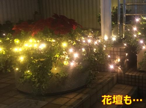 1花壇まで