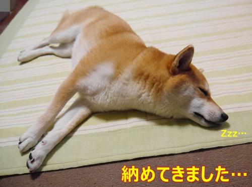 1お疲れ様