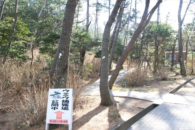 0207_kuji020.jpg