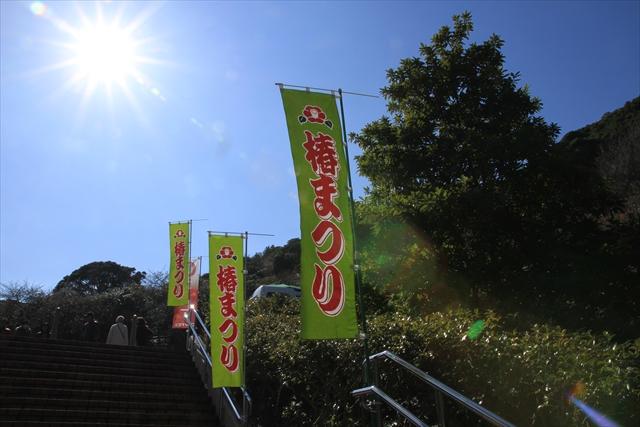 0211伊豆大島024