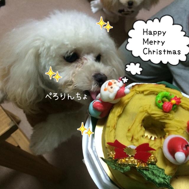 ココモコ Merry Christmas 2015 2