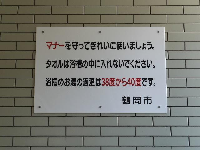 2015_0809(072).jpg