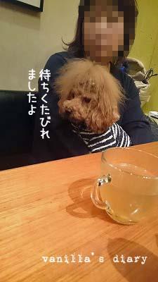 DSC_0421_20160106000851126.jpg